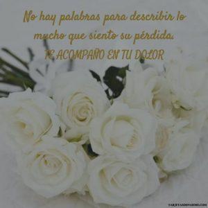 Flores de condolencias