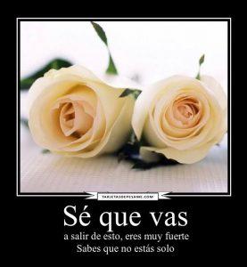 rosas blancas con frases de pésame
